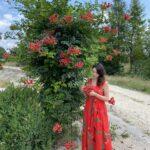 Rozkloszowana czerwona sukienka Margarita